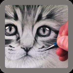 Pencil Sketch - Videos