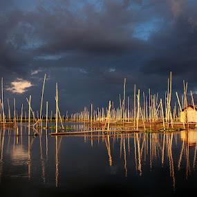 Danau Limboto by Suwito Pomalingo - Landscapes Waterscapes ( indonesia, danau, limboto, gorontalo )