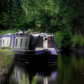 Marooned by Gordon Simpson - Transportation Boats