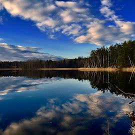 Reflection  by Alf Winnaess - Uncategorized All Uncategorized