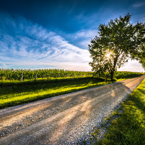 by William Ducklow - Landscapes Prairies, Meadows & Fields ( william david photography, perth county )