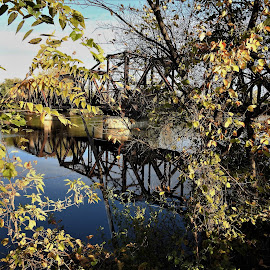Bridge Flair by Kathy Woods Booth - Buildings & Architecture Bridges & Suspended Structures ( railroad, reflections, waterscape, railroad tracks, riverside, mirrored reflections )