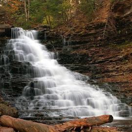Too Many Steps To Count by Gene Walls - Landscapes Forests ( water, boulders, stream, kitchen creek, cliff, waterfall, leaves, wilderness, nature, autumn, cascade, f l ricketts falls, fall, creek, falls, trees, rocks, whitewater, ricketts glen state park )