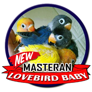 Download Masteran Lovebird Baby For PC Windows and Mac