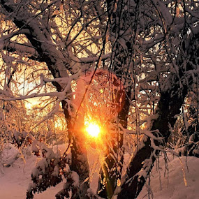 by Heidi George - Landscapes Sunsets & Sunrises (  )