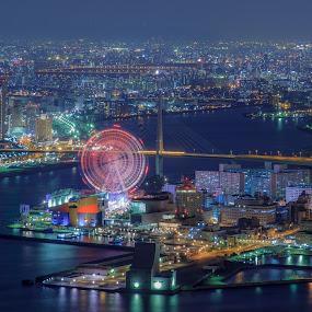 Seaside amusement park by Ryusuke Komori - City,  Street & Park  Amusement Parks ( japan, amusement park, osaka, sea, night )