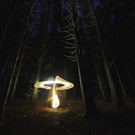 Mushroom by Augustin Cross - Abstract Light Painting ( mushroom, light painting, nature, nocturnal, forest, woods )