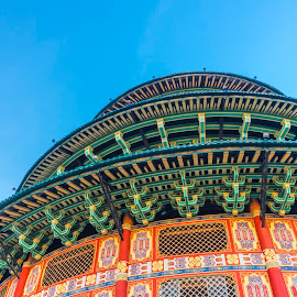 Pagoda Tian Ti by Xióng Xióng - Buildings & Architecture Places of Worship ( temple, oriental, pagoda, buddha, chinese )
