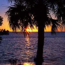 Sunset Beach by Glenn Miller - Landscapes Sunsets & Sunrises ( memorial, florida, sunset, coastline, landscapes )