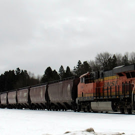 WINTER TRAIN by Cynthia Dodd - Novices Only Objects & Still Life ( winter, railroad, snow, train, transportation )
