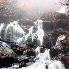 The Vivacious Flow by Avishek Bhattacharya - Landscapes Waterscapes ( waterfalls, rocks, catawba falls, ashville, lower catawba falls, water, flow,  )