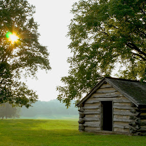 A cabin in the sun by Steph Doyle - Buildings & Architecture Public & Historical ( valley forge, cabin, trees, sun )