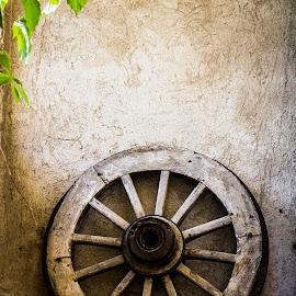 Old farm wheel by Mirko Prosseda - Artistic Objects Antiques ( plow, wheel, old, farm, wall )