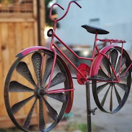 Mini Bike by Joel Padilla - Novices Only Objects & Still Life