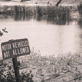 No Motor Vehicles Allowed by Jim Hendrickson - Novices Only Objects & Still Life ( #black_white, #nature, #pond, #sign, #water )