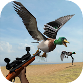 Game Wild Bird Hunt apk for kindle fire