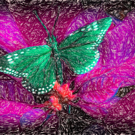 Green Butterfly  On Bricks by Dave Walters - Digital Art Abstract ( plant, colors, digital art, artistic, lumix fz2500 )