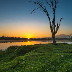 Sunrise at lagoon by Cristobal Garciaferro Rubio - Landscapes Sunsets & Sunrises ( malinche, lagoon, tree, tlaxcala, mexico, lake, sun, sunrise rise )