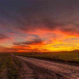 Farm Road by Clive Wright - Landscapes Sunsets & Sunrises ( farm, sunset, landscape, fire )