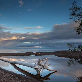 by Larry Kaasa - Landscapes Sunsets & Sunrises ( water, clouds, driftwood, nature, cloud reflection, waterscape, blue, sunset )