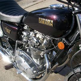 '79 Yamaha 650 Special by Karen Wiegold - Transportation Motorcycles (  )