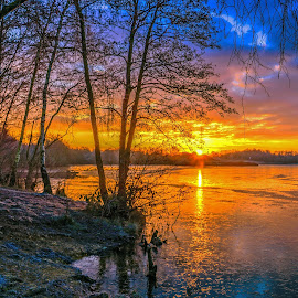 Sunrise over Horseshoe Lake, Sandhurst by Dave Williams - Landscapes Sunsets & Sunrises ( sandhurst, dawn, bench, ice, frost, trees, lake, sunrise, horseshoe lake, berkshire, dave williams )