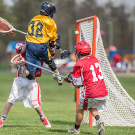 Leaping Goal by Keith Kijowski - Sports & Fitness Lacrosse