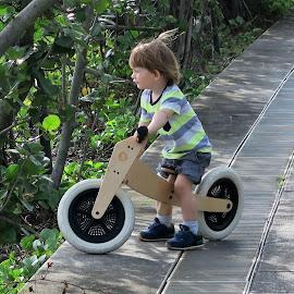 2-Wheeler by Dennis Ng - Transportation Bicycles