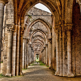 SAN GALGANO ABBEY (Tuscany, Italy) by Gianluca Presto - Buildings & Architecture Architectural Detail ( nobody, old, gothic, tuscany, architechture, toscana, church, arch, architectural detail, architecture, historic, story, ancient, italia, legend, arches, architectural, perspective, stones, medieval, italy, abandoned, abbey )