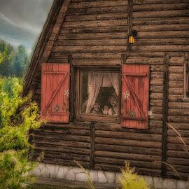 Alpine chalet by Mirko Ilić - Buildings & Architecture Homes ( tara, chalet )