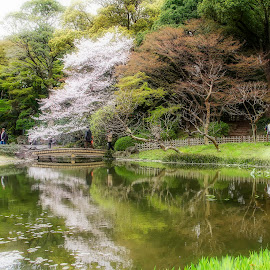 tokyo by Christian Heitz - City,  Street & Park  City Parks