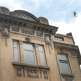 Building from 1923 by Joie Negru - Buildings & Architecture Architectural Detail ( 1923 building constanta romania,  )