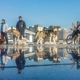 by Boldbaatar Tsend - City,  Street & Park  Street Scenes