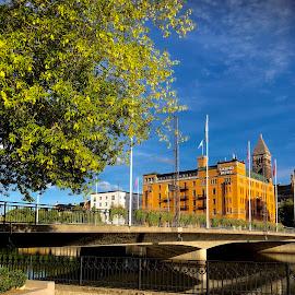 Sunny Norrköping by Alf Winnaess - City,  Street & Park  Neighborhoods