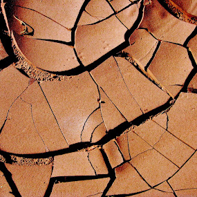 Cracked by Monica Lawlis - Landscapes Deserts