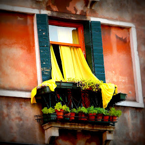 by Dhannya Jacob - Buildings & Architecture Other Exteriors ( window, venice, yellow, italy, colours )