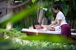 Amrita Spa Full Body to Body Massage Parlour in Delhi