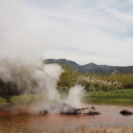 Old Faithful Geyser  by Carl Shaver - Nature Up Close Water