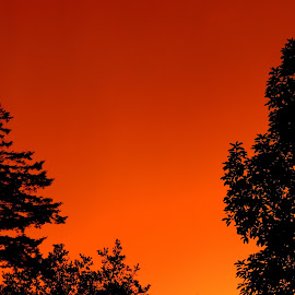 Eery Orange Of A Passing Mesocyclone by Becky Luschei - Landscapes Weather ( blowing, orange, sky, eery, mesocyclone, cell, interesting, passing, early afternoon )