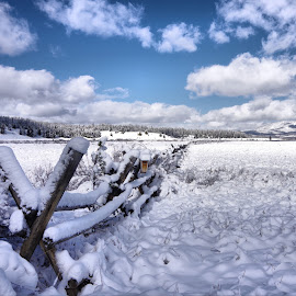 Snow Fence by Dave Bower - Landscapes Weather