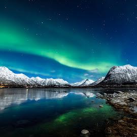 Moonlight and Aurora over Vidbukta by Jens Andre Mehammer Birkeland - Landscapes Mountains & Hills ( reflection, winter, ice, snow, aurora borealis, landscape, moonlight )