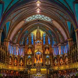 Notre Dame Basilica by Dale Youngkin - Buildings & Architecture Places of Worship ( icon, catholic, church, notre dame, basilica, religious )