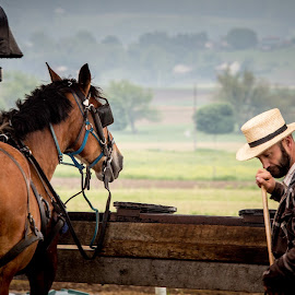 a man and his horse by Jesper Holgaard - Transportation Other ( amish, carriage, mand med hest, amishland, horse, usa, man, virginia*usa )