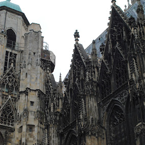 St. Stephen's Cathedral ~ Vienna, Austria by Ray Anthony Di Greco - Buildings & Architecture Places of Worship ( churches, place of worship, architecture )