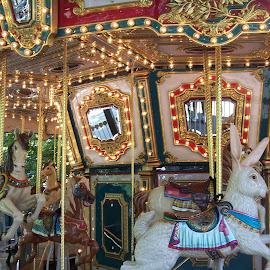 Carousel Me by Sandy Stevens Krassinger - City,  Street & Park  Amusement Parks ( lights, ride, rabbit, bunny, horse, carousel, historical,  )