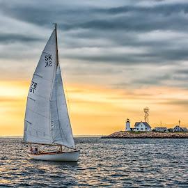 Sailing Home by Carl Albro - Transportation Boats ( sailboat, boat )