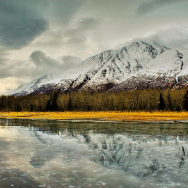 Reflections On Ice by Patricia Phillips - Landscapes Travel ( alaska ponds reflections )