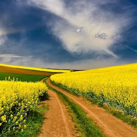Prírodou malované. by Ján Hrmo - Landscapes Prairies, Meadows & Fields ( luky, pulia, obloha )