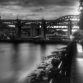 On the Tyne  by Damo Williams - Instagram & Mobile Android ( water, tree, transport, black and white, buildings, trees, travel, architecture, bridges, people, river )