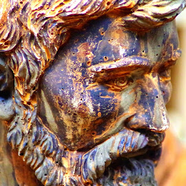 Rusted stare by Martin Stepalavich - Artistic Objects Still Life